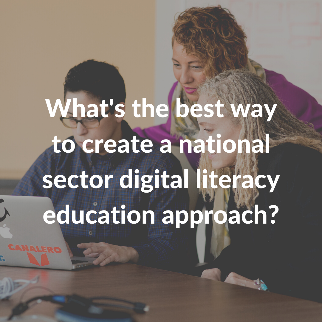 What's the best way to create a national sector digital literacy education approach?